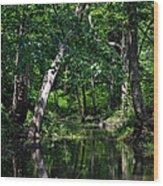 Peaceful Creek Wood Print
