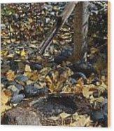 Peaceful  Wood Print by Denise Ellis