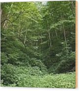 Peaceful Forest Wood Print