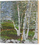 Peaceful Meadow Wood Print
