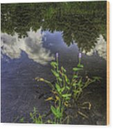 Peaceful Pond Wood Print