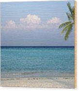 Peaceful Tropical Beach With One Palm Tree Wood Print