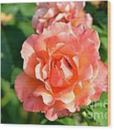 Peach And Yellow Ruffled Wood Print