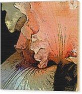 Peach Iris Digital Art Wood Print