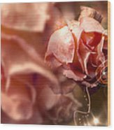 Peach Roses And Ribbons Wood Print by Svetlana Sewell