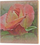 Peachy Keen Wood Print