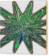 Peacock Burst Wood Print