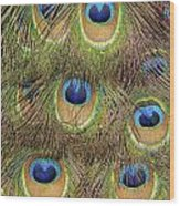 Peacock Feather Eyes Wood Print