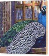 Peacock Roosts Wood Print