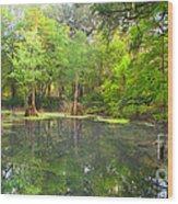Peacock Springs State Park Wood Print