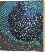 Peacock With Bling Wood Print