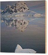 Peak On Wiencke Island Antarctic Wood Print by Colin Monteath