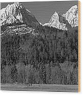 Peaks Near Schwangau In The Bavarian Alps Wood Print