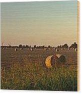 Peanut Field Bales At Dawn 1 Wood Print