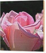 Pearl Pink Petals Wood Print