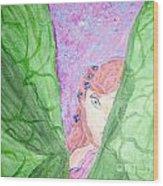 Peeking Fairy  Wood Print by Elizabeth Arthur