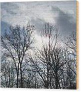 Peeking Sun Through The Branches Wood Print