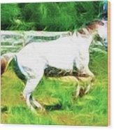 Pegasus Impression Wood Print