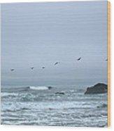 Pelican 2 Oregon Coast Wood Print