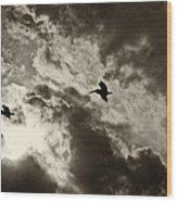 Pelican Fly By Wood Print