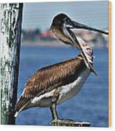 Pelican II Wood Print