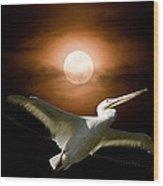 Pelican Moon Wood Print