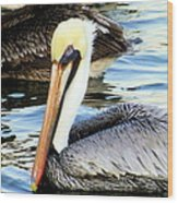 Pelican Pete Wood Print by Karen Wiles