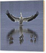 Pelican Protector - Florida Wildlife Scene Wood Print