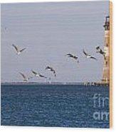 Pelicans And Morris Island Light 1 Wood Print