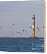 Pelicans And Morris Island Light 2 Wood Print