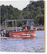 Pelicans Following Boat Wood Print