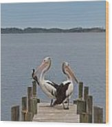 Pelicans On A Timber Landing Pier Mooring Wood Print