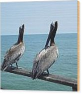 Pelicans On The Pier Wood Print