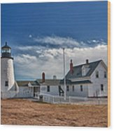 Pemaquid Point Lighthouse 4800 Wood Print