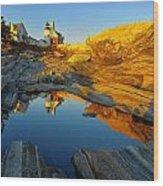 Pemaquid Point Reflection 2 Wood Print