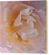 Peony Pink Wood Print