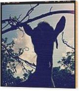 Pepper The Goat Wood Print by Dana Coplin