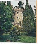 Pepperpot Tower At Powerscourt Wood Print