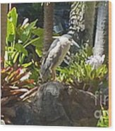 Perched Bird Wood Print by Silvie Kendall