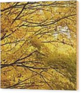 Perfect Autumn Wood Print