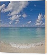 Perfect Beach Day With Blue Skies Wood Print by Mike Theiss