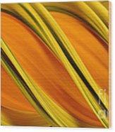 Peripheral Streak Image Of Squash Wood Print by Ted Kinsman