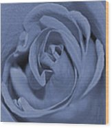 Periwinkle Rose Wood Print
