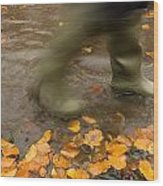 Person In Motion Walks Through Puddle Wood Print