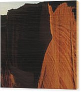 Person Standing Atop The Kings Canyon Wood Print