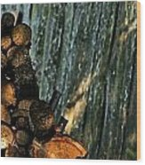 Personal Pile Wood Print