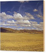 Peruvian High Plains 2 Wood Print
