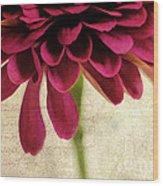 Petales De Fleurs Wood Print