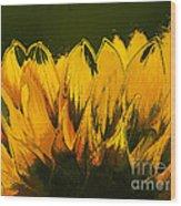 Petales De Soleil - A41b Wood Print by Variance Collections