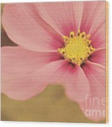 Petaline - P05a Wood Print